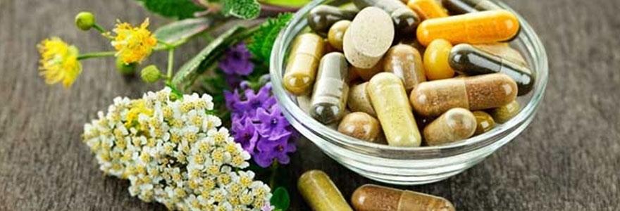 Les plantes et la santé